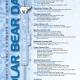 Polar Bear Days Poster